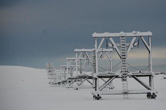 Svalbard Husky: Aerial Ropeway near Kennels