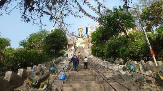 Swayambhunath-Tempelkomplex: とどめの階段
