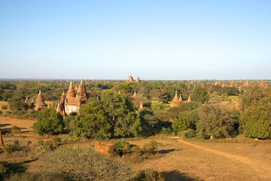 Aureum Palace Hotel & Resort Bagan : great view of Bagan from hotel observation tower