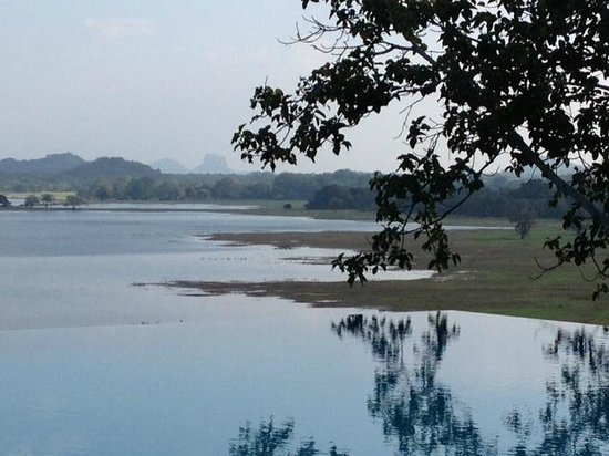 Heritance Kandalama : An infinity pool in all its glory.