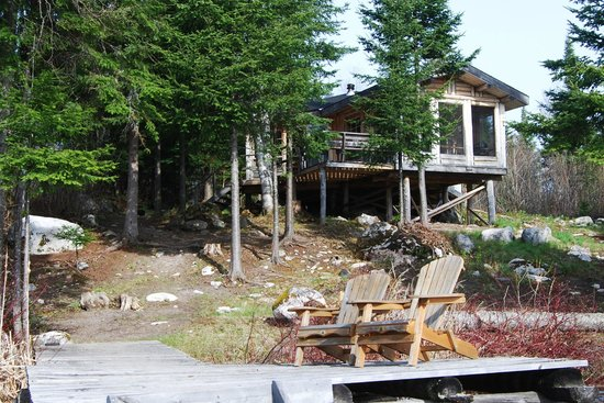 Errington's Wilderness Island Resort: lodges