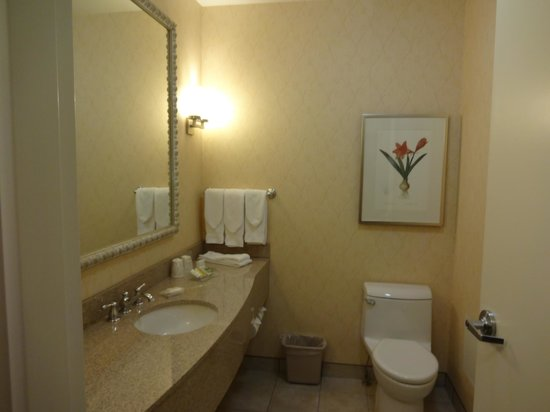 Hilton Garden Inn Ottawa Airport: Large room