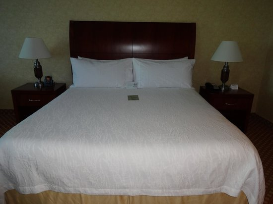 Hilton Garden Inn Ottawa Airport : Large room