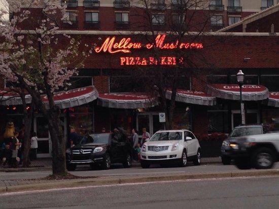 Mellow Mushroom: Mellon Mushroom