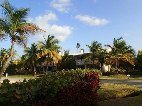 Gran Melia Golf Resort Puerto Rico : rooms