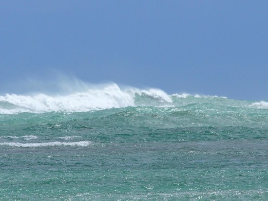 Gran Melia Golf Resort Puerto Rico : waves
