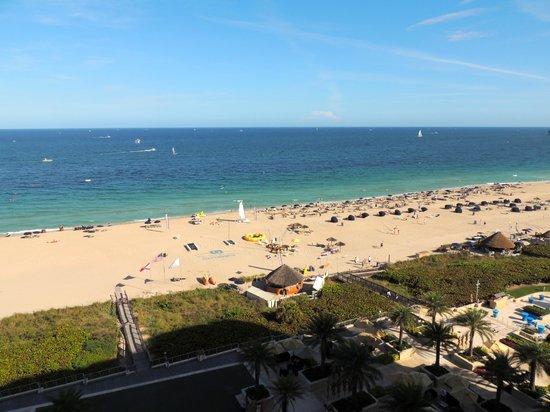 Fort Lauderdale Marriott Harbor Beach Resort & Spa : View from room