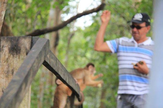 Parque Ecologico Januari: Жизнь кипит