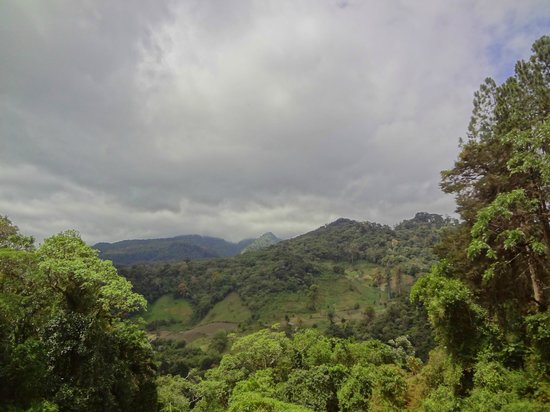 The Lost Waterfalls-Boquete: View from the top of the initial climb