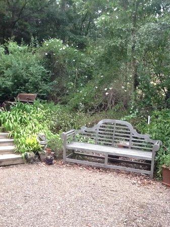Bellbird Cottage B&B: peaceful spot to appreciate the wildlife