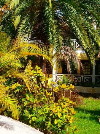 Buccaneer Beach Club: Gardens