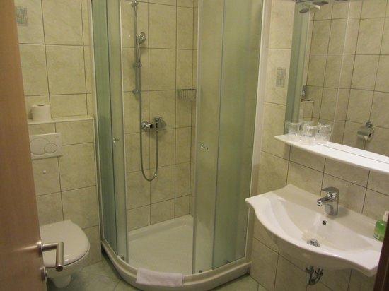 Hotel Gasperin Bohinj: ванная
