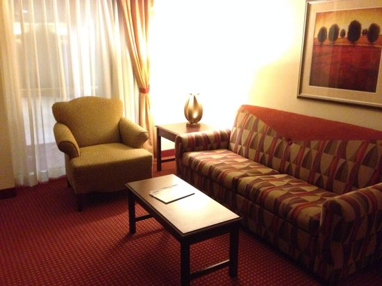 Embassy Suites by Hilton Hotel & Montgomery Conference Center: Living area