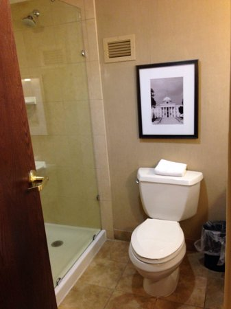 Embassy Suites by Hilton Hotel & Montgomery Conference Center : Bathroom