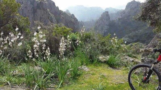 Monte Arcosu: I monti verso pula