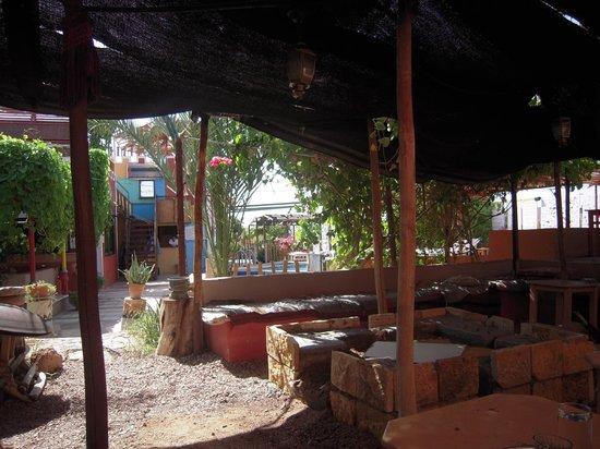 Bedouin Garden Village: aree comuni.. bar..