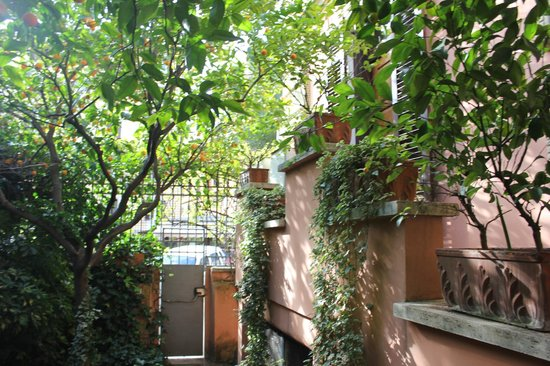 La Maison Royale: Апельсиновый сад