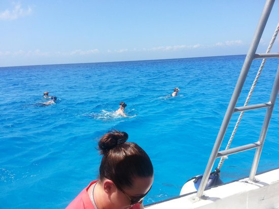The Amazing Cozumel Race: Diving for clues! (not everyone has to get in the water) Yes - the water is THAT blue!