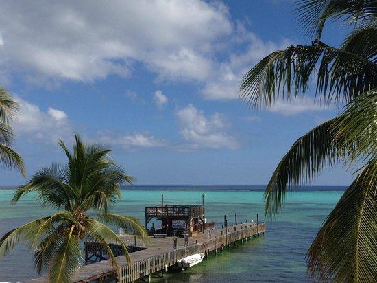 Little Cayman Beach Resort : View from Room 305