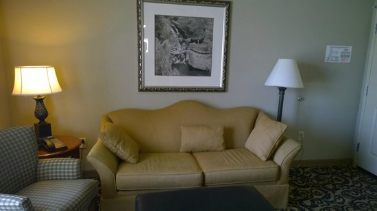 Hilton Columbia Center: living room couch