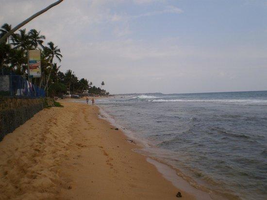 Citrus Hikkaduwa: Strand vor dem Hotel