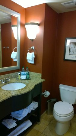 Hilton Columbia Center : Bathroom