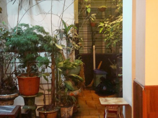 Giang Cafe : Little Gazebo in the cafe