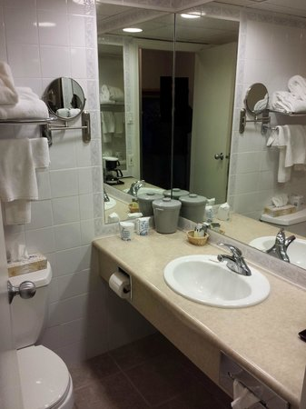 Delta Town & Country Inn: Bathroom