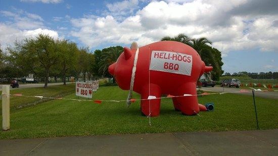 Heli-Hogs : Respect the pig :)