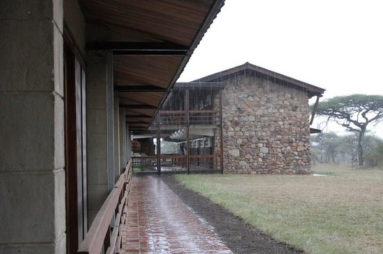 Seronera Wildlife Lodge: Overhang good if it is raining