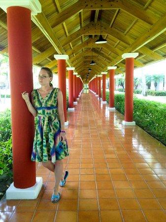 Iberostar Punta Cana: территория