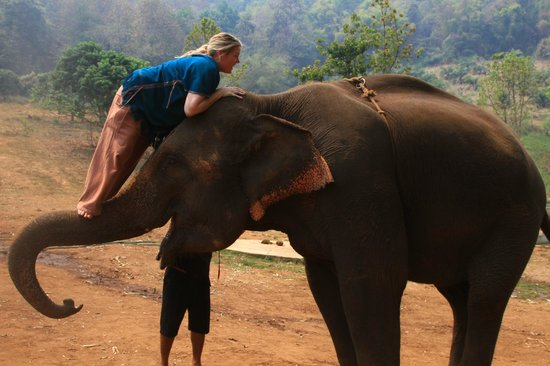 Patara Elephant Farm - Private Tours : Mounting on the trunk~ its not easy. LOL