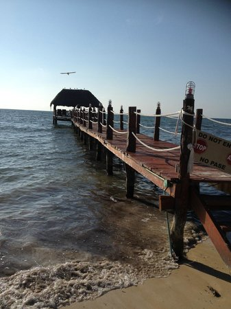 Azul Sensatori Mexico, by Karisma: Watch the pelicans land on here