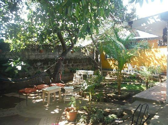 Latina Hostal: the nice garden