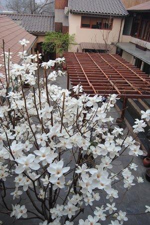 Jingshan Garden Hotel : Atrium