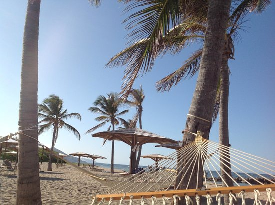 Nisbet Plantation Beach Club: View from the hammock