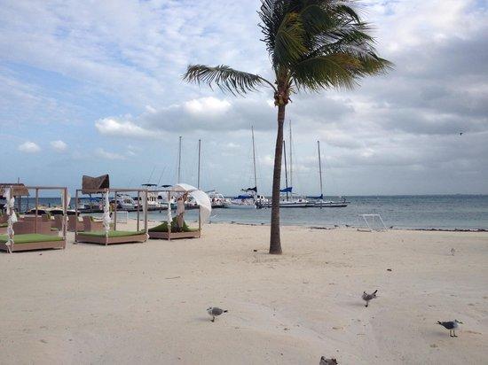 Ocean Spa Hotel: Praia