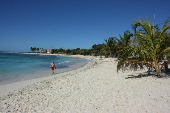 Le Rotabas: plage a st françois proche de st anne
