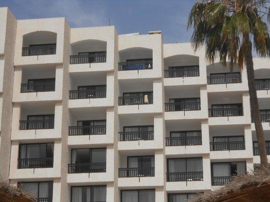 Beach Albatros Agadir : Room