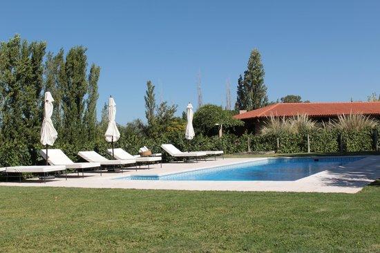 Posada Verde Oliva: Pool amongst the vineyards