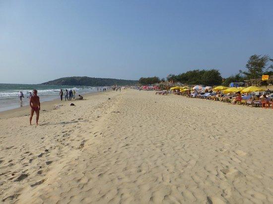 Treebo Santiago Beach Resort : Baga Beach
