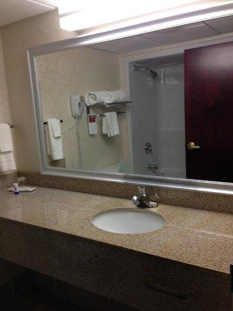Hawthorn Suites by Wyndham Charleston : banheiro