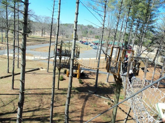 The Beanstalk Journey Zipline: View of the wood & rope bridges & first platforms