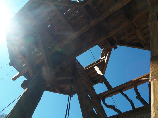 The Beanstalk Journey Zipline: Ladder access to one of the next platforms