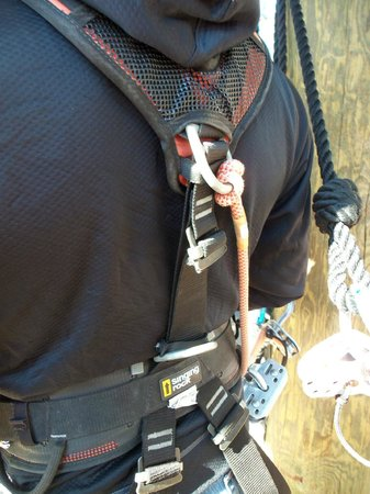 The Beanstalk Journey Zipline: Harness hardware