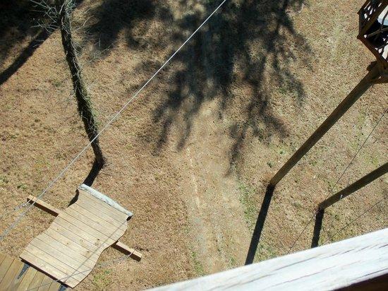 The Beanstalk Journey Zipline: A view down below