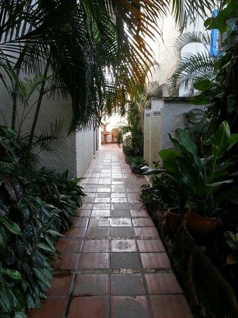 Hotel Villablanca Huatulco : Pasillo