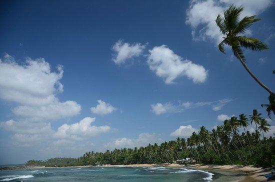 Dickwella Resort & Spa: beach area