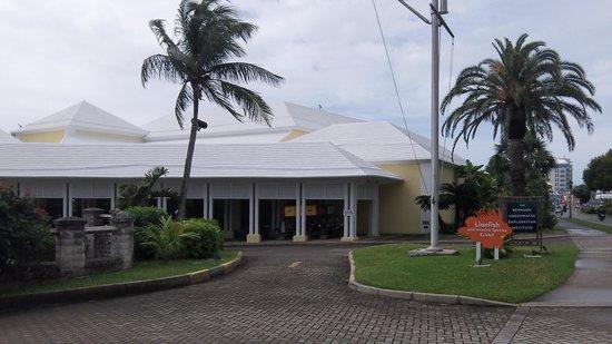 Bermuda Underwater Exploration Institute: The B.U.E.I