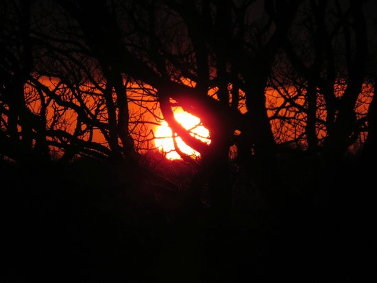 Bryn-y-Ddafad Country Guest House: Sunset